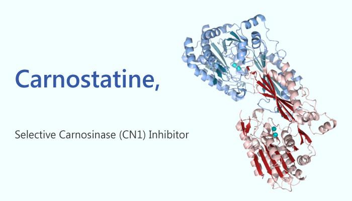 Carnostatine SAN9812 carnosinase CN1 inhibitor Renal Diseases 2019 04 10 - Carnostatine (SAN9812), a Potential Therapeutic Inhibitor for Renal Diseases