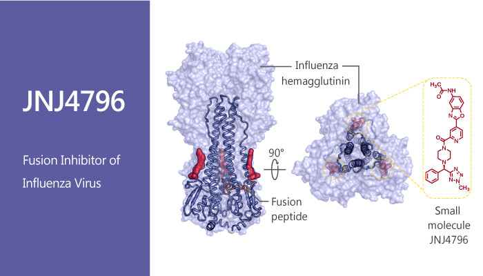 JNJ4796 Oral Influenza Virus Inhibitor Mimics bnAbs Functionality 2019 04 24 - JNJ4796, An Oral Influenza Virus Inhibitor, Mimics the Functionality of bnAbs