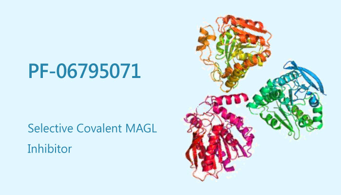 PF 06795071 MAGL Inhibitor 2019 04 28 - PF-06795071, a Potent Covalent MAGL Inhibitor