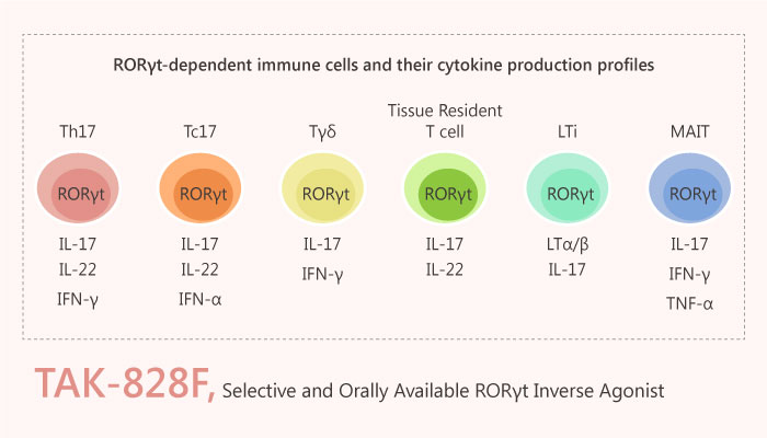 TAK 828F RORγt Inverse Agonist Autoimmune Disorders2019 04 26 - TAK-828F is a Potent and Selective RORγt Inverse Agonist