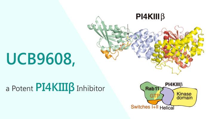 UCB9608 PI4KIIIβ Inhibitor Organ Transplantation immune rejection 2019 04 09 - UCB9608, A Potent PI4KIIIβ Inhibitor