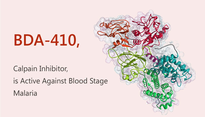 BDA 410 a Calpain Inhibitor is Active Against Blood Stage Malaria 2019 05 29 - BDA-410 a Calpain Inhibitor, is Active Against Blood Stage Malaria