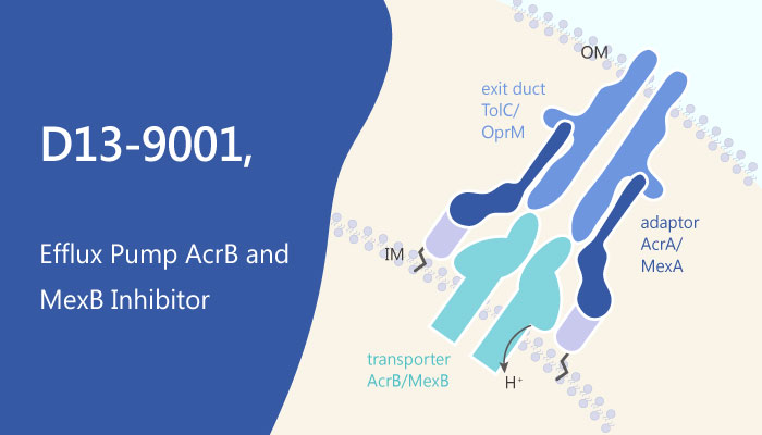 D13 9001 Efflux Pump AcrB and MexB Inhibitor 2019 05 16 - An Efflux Pump AcrB and MexB Inhibitor D13-9001