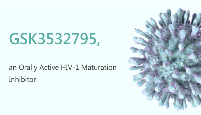 GSK3532795 HIV1 Maturation Inhibitor GSK3532795 2019 05 18 1 - Identification of a HIV 1 Maturation Inhibitor GSK3532795