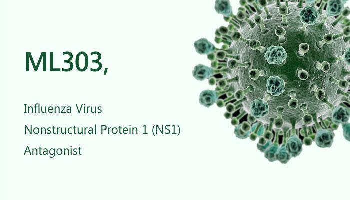 ML303 Pyrazolopyridine Influenza Virus Nonstructural Protein 1 NS1 Antagonist 2019 05 13 - ML303, a Pyrazolopyridine Influenza Virus Nonstructural Protein 1 Antagonist