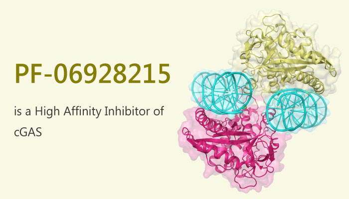 PF 06928215 a High Affinity Inhibitor of cGAS 2019 05 30 - PF-06928215 is a High Affinity Inhibitor of cGAS