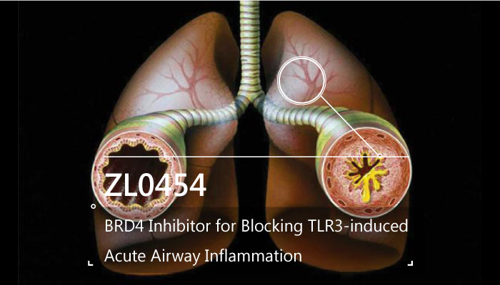 ZL0454 BRD4 Inhibitor Blocking TLR3 induced Acute Airway Inflammation 2019 05 07 - ZL0454 is a BRD4 Inhibitor for Blocking TLR3-induced Acute Airway Inflammation
