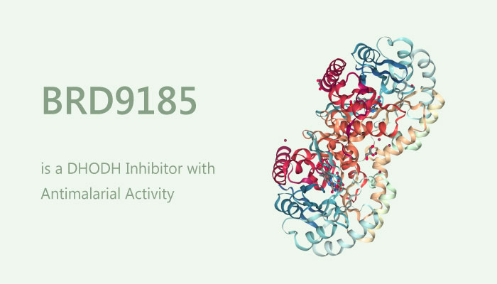 BRD9185 is a DHODH Inhibitor with Antimalarial Activity 2019 06 13 - BRD9185 is a DHODH Inhibitor with Antimalarial Activity