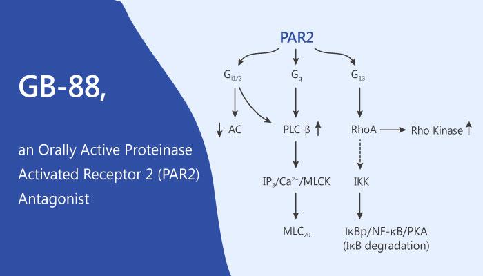 Modulating Human Proteinase Activated Receptor 2 with a Antagonist GB 88 2019 06 12 - Modulating Human Proteinase Activated Receptor 2 with a Antagonist GB-88