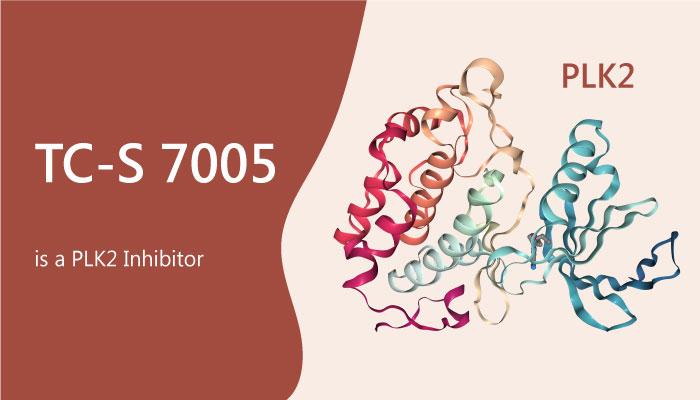 TC S 7005 is a Polo Like Kinases Plks Inhibitor 2019 06 14 - TC-S 7005 is a Polo-Like Kinases (Plks) Inhibitor