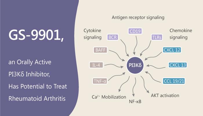 GS 9901 an Orally Active PI3Kδ Inhibitor Has Potential to Treat Rheumatoid Arthritis 2019 07 24 - GS-9901, an Orally Active PI3Kδ Inhibitor, Has Potential to Treat Rheumatoid Arthritis