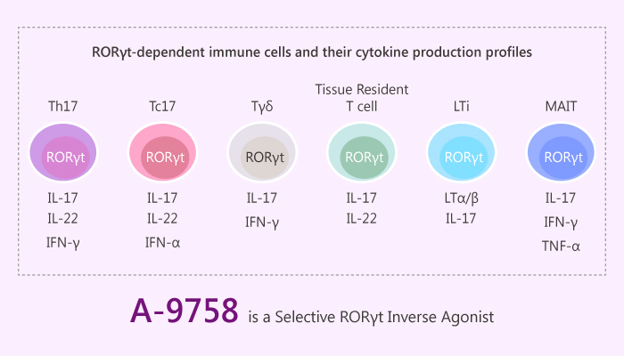 A 9758 is a Selective RORγt Inverse Agonist 2019 08 29 - A-9758 is a Selective RORγt Inverse Agonist