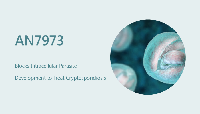AN7973 Blocks Intracellular Parasite Development to Treat Cryptosporidiosis 2019 08 17 - AN7973 Blocks Intracellular Parasite Development to Treat Cryptosporidiosis
