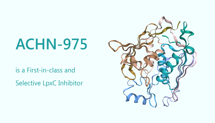 ACHN 975 is a First in class and Selective LpxC Inhibitor 2019 10 21 - ACHN-975 is a First-in-class and Selective LpxC Inhibitor
