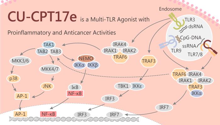 CU CPT17e is a Multi TLR Agonist with Proinflammatory and Anticancer Activities 2019 10 28 - CU-CPT17e is a Multi-TLR Agonist with Proinflammatory and Anticancer Activities