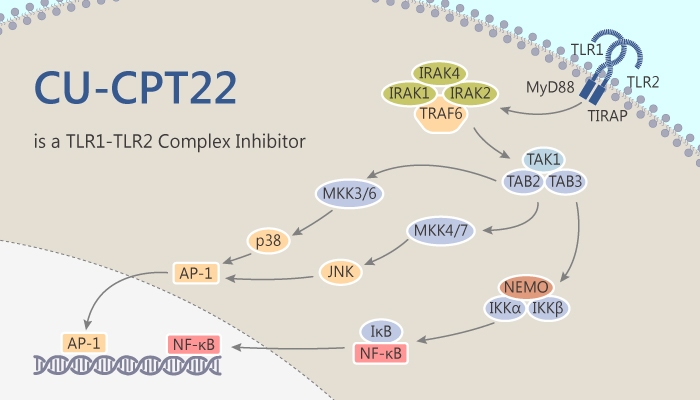 CU CPT22 is a TLR1 TLR2 Complex Inhibitor 2019 10 27 - CU-CPT22 is a TLR1-TLR2 Complex Inhibitor