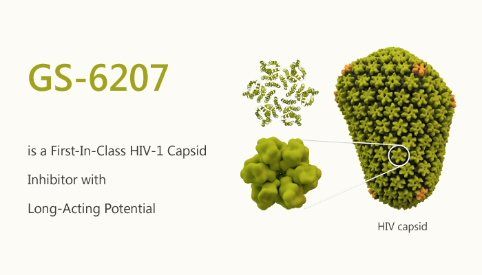 GS 6207 is a First In Class HIV 1 Capsid Inhibitor with Long Acting Potential 2019 12 04 - GS-6207 is a First-In-Class HIV-1 Capsid Inhibitor with Long-Acting Potential