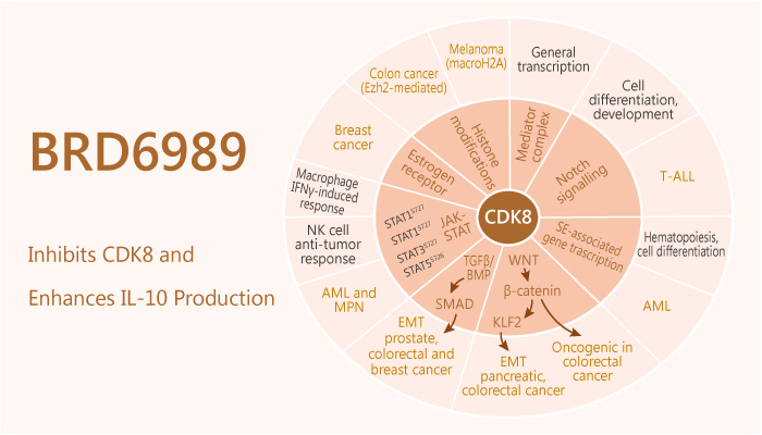 BRD6989 Inhibits CDK8 and Enhances IL 10 Production 2019 12 24 - BRD6989 Inhibits CDK8 and Enhances IL-10 Production