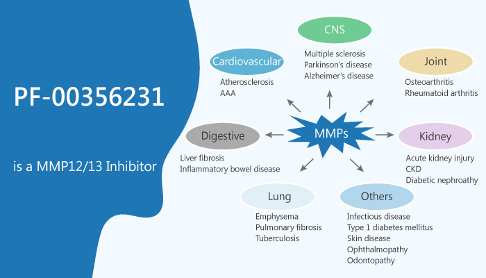PF 00356231 is a Dual MMP12 and MMP13 Inhibitor 2019 12 19 - PF-00356231 is a Dual MMP12 and MMP13 Inhibitor