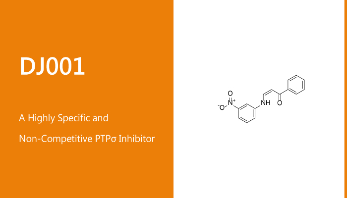 DJ001 is a Highly Specific and Non Competitive PT σ Inhibitor 2020 01 30 - DJ001 is a Highly Specific and Non-Competitive PTPσ Inhibitor