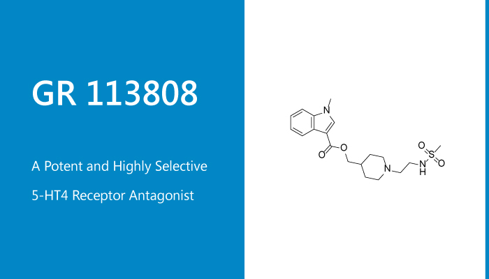 GR 113808 is a Potent and Highly Selective 5 HT4 Receptor Antagonist 2020 01 21 - GR 113808 is a Potent and Highly Selective 5-HT4 Receptor Antagonist
