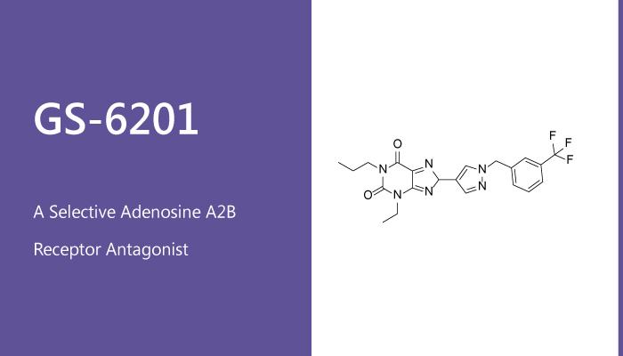 GS 6201 is a Selective Adenosine A2B Receptor Antagonist 2020 01 27 - GS-6201 is a Selective Adenosine A2B Receptor Antagonist