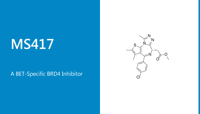 MS417 is a BET Specific BRD4 Inhibitor 2020 01 17 - MS417 is a BET-Specific BRD4 Inhibitor