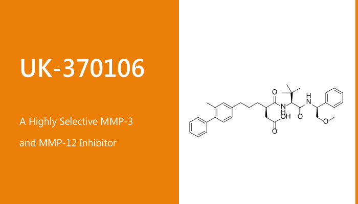 UK 370106 is a Highly Selective MMP 3 and mMP 12 Inhibitor 2020 02 06 - UK-370106 is a Highly Selective MMP-3 and MMP-12 Inhibitor