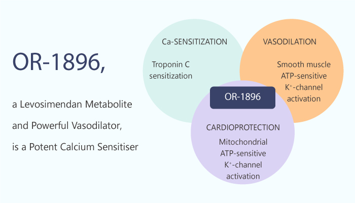 OR 1896 a Levosimendan Metabolite and Powerful Vasodilator is a Potent Calcium Sensitiser 2020 03 03 - OR-1896, a Levosimendan Metabolite and Powerful Vasodilator, is a Potent Calcium Sensitiser