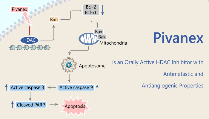 Pivanex is an Orally Active HDAC Inhibitor with Antimetastic and Antiangiogenic Properties 2020 04 10 - Pivanex is an Orally Active HDAC Inhibitor with Antimetastic and Antiangiogenic Properties