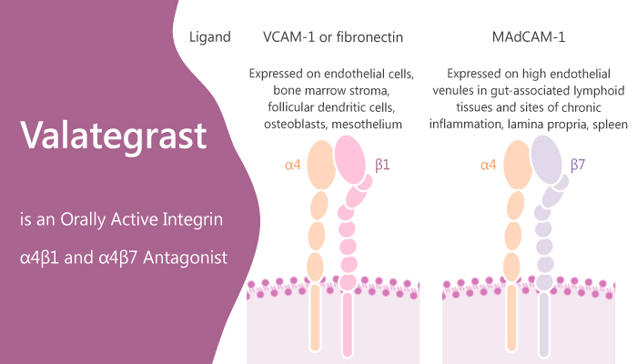 Valategrast is an Orally Active Integrin α4β1 and α4β7 Antagonist 2020 04 07 - Valategrast is an Orally Active Integrin α4β1 and α4β7 Antagonist