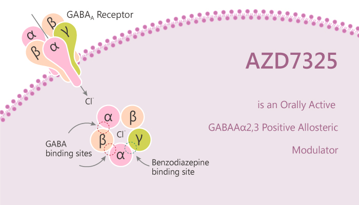 AZD7325 is an Orally Active GABA α2 3 Positive Allosteric Modulator 2020 05 06 2 - AZD7325 is an Orally Active GABA<sub>A</sub>α2,3 Positive Allosteric Modulator