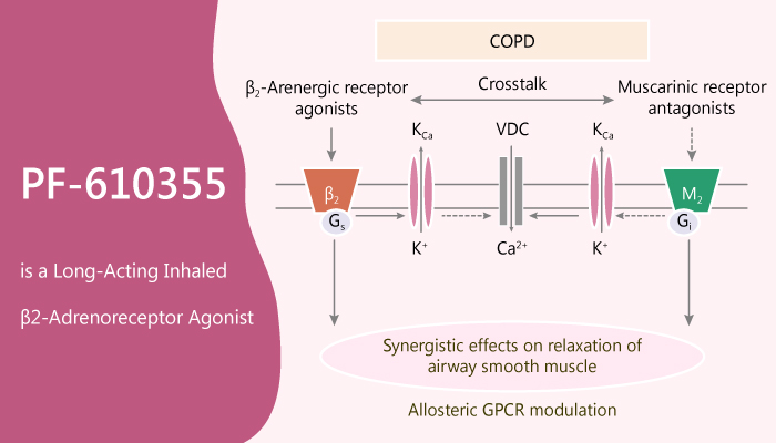 PF 610355 is a Long Acting Inhaled β2 Adrenoreceptor Agonist 2020 05 23 - PF-610355 is a Long-Acting Inhaled β2-Adrenoreceptor Agonist