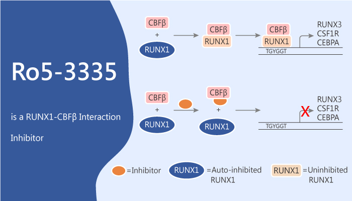 Ro5 3335 Acts as an Inhibitor of Core Binding Factor CBF Leukemia 2020 05 12 - Ro5-3335 Acts as an Inhibitor of Core Binding Factor (CBF) Leukemia