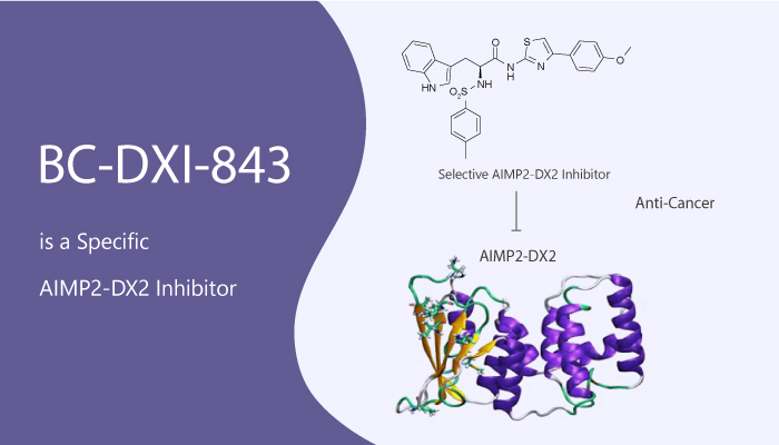 BC DXI 843 is a Specific AIMP2 DX2 Inhibitor 2020 06 23 - BC-DXI-843 is a Specific AIMP2-DX2 Inhibitor