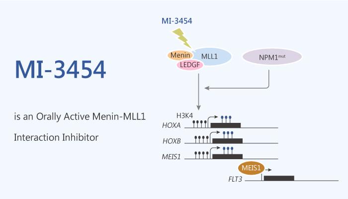 MI 3454 is an Orally Active Menin MLL1 Interaction Inhibitor 2020 06 24 - MI-3454 is an Orally Active Menin-MLL1 Interaction Inhibitor