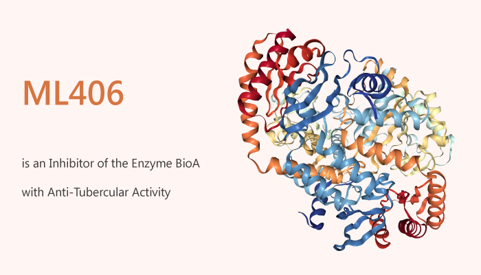 ML406 Shows Anti Tubercular Activity via Inhibiting MtbbioA DAPA Synthase Enzyme 2020 06 27 - ML406 Shows Anti-Tubercular Activity via Inhibiting MtbbioA (DAPA Synthase) Enzyme