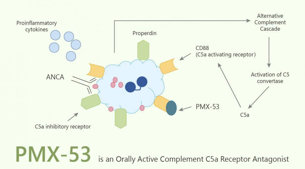 PMX 53 is an Orally Active Complement C5a Receptor Antagonist 2020 06 09 1038x576 - PMX-53 is an Orally Active Complement C5a Receptor Antagonist