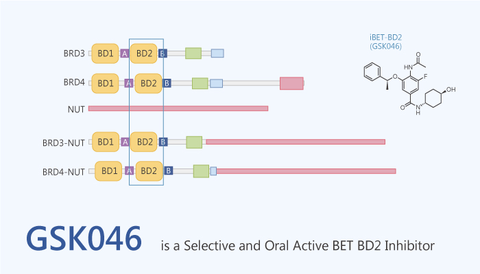GSK046 is a Selective and Oral Active BET inhibitor 2020 08 01 - GSK046 is a Selective and Oral Active BET Inhibitor