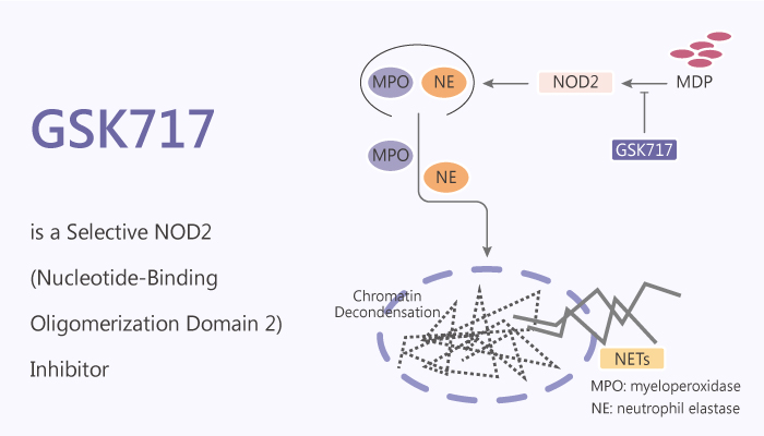 GSK717 is a Selective NOD2 Nucleotide Binding Oligomerization Domain 2 Inhibitor 2020 07 30 - GSK717 is a Selective NOD2 (Nucleotide-Binding Oligomerization Domain 2) Inhibitor