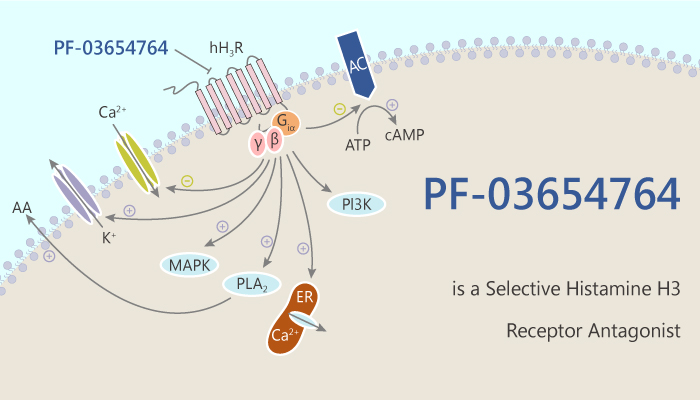 PF 03654764 is a Selective Histamine H3 Receptor Antagonist 2020 07 29 - PF-03654764 is a Selective Histamine H3 Receptor Antagonist