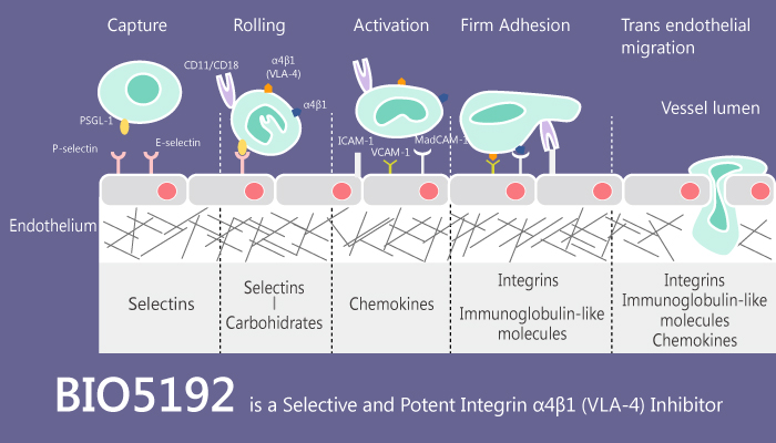 BIO5192 is a Selective and Potent Integrin α4β1 VLA 4 Inhibitor 2020 08 29 - BIO5192 is a Selective and Potent Integrin α4β1 (VLA-4) Inhibitor