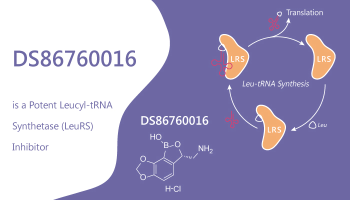 DS86760016 is a Potent Leucyl tRNA Synthetase LeuRS Inhibitor 2020 08 12 - DS86760016 is a Potent Leucyl-tRNA Synthetase (LeuRS) Inhibitor