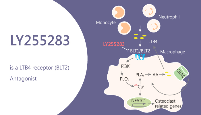 LY255283 is a LTB4 receptor BLT2 Antagonist 2020 08 15 - LY255283 is a LTB4 receptor (BLT2) Antagonist