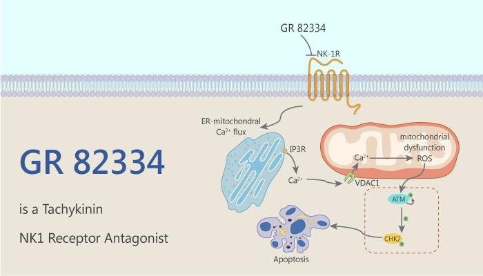 GR 82334 is a Tachykinin NK1 Receptor Antagonist 2020 09 09 - GR 82334 is a Tachykinin NK1 Receptor Antagonist