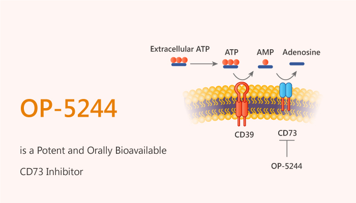 OP 5244 is a Potent and Orally Bioavailable CD73 Inhibitor 2020 10 13 - OP-5244 is a Potent and Orally Bioavailable CD73 Inhibitor