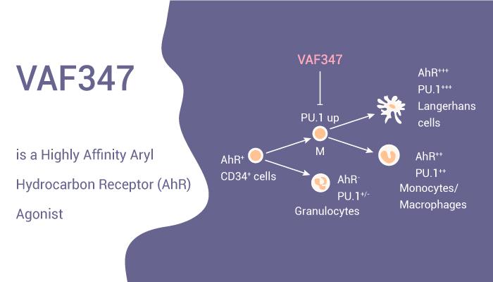 VAF347 is a Highly Affinity Aryl Hydrocarbon Receptor AhR Agonist 2020 10 20 - VAF347 is a Highly Affinity Aryl Hydrocarbon Receptor (AhR) Agonist